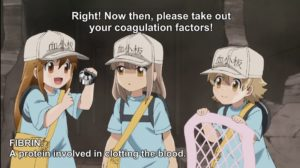 Cells at Work Platelet